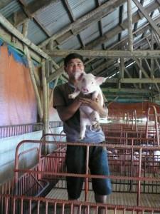 売られていく子豚をつかまえる研修生のマイケルくん