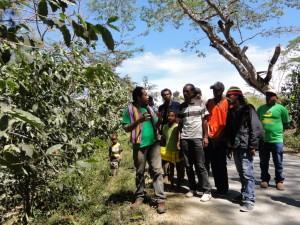 生産者と一緒にコーヒー畑を歩き、地形や気候を観察しながら、どんな作物を植えるのが適しているかを調査。