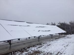 農場に設置された太陽光パネル。
