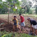 スタッフと一緒に畑で作業する研修生たち